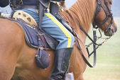Detail, Union cavalry sergeant on his horse — Stock Photo