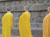 日本僧侣和尼姑展示佛教仪式 — 图库照片
