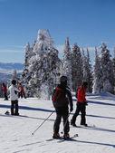 スキーヤーとスノーボーダーの嵐のピークの上に — ストック写真