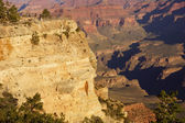 Toeristen op zoek over de canyon — Stockfoto