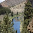 Valley floor of the Crooked River — Stock Photo