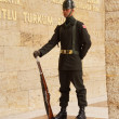 Soldier at the changing of the guard ceremony — Stock Photo #48192329