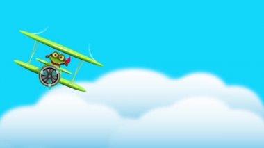 Frog pilot — Stok video