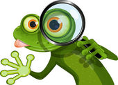 Frog and magnifying glass — Stock Vector