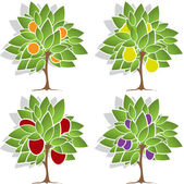 Four fruit trees — Wektor stockowy