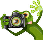 Frog with a camera — Stock Vector