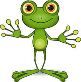 Cute frog — Stock Photo
