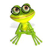 Green frog — Photo