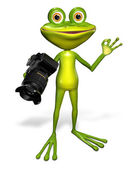 Frog with a camera — Stock Photo