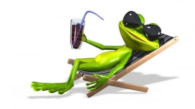 Frog in a deckchair — Stock Video