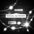 Royalty-Free Stock Imagen vectorial: SOCIAL NETWORK.