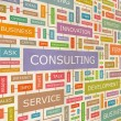 CONSULTING. — Stock vektor