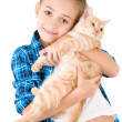 The girl with a red kitten — Stock Photo