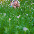 Young woman blowing a dandelion on fields — Stock Photo #23456830