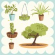 Stock Vector: Illustration of Home Plants