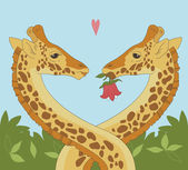 Giraffe Couple — Stock Vector