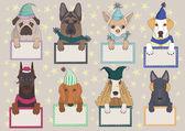 Dogs in Caps — Stock Vector