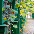 Stock Photo: Autumn Pergola