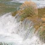 Flowing Stream — Stock Photo