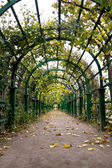 Autumn Pergola — Stock Photo