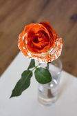 Painted Rose — Stock Photo