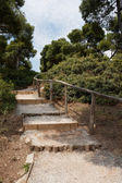 Steps in Park — Stock Photo