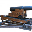 Old cannon — Stock Photo