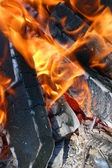 Burning woods in a brazier — Stock Photo