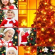 Christmas collage — Stock Photo #13806063