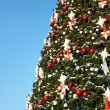 Christmas tree  — Photo