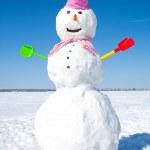Snowman — Stock Photo #14535971