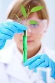 Biotechnologie — Stock fotografie