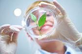 Biotecnología — Foto de Stock