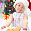 Biscuits to Santa — Stock Photo #34815581