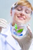 Biotechnology — Stock Photo