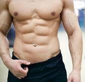 Man body in gym — Stock Photo