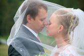 Newlyweds under a veil — Stock Photo