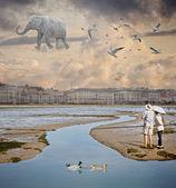 Elefante voador — Fotografia Stock