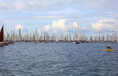 Barcolana regatta in Trieste — Stock Photo