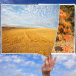 Book of seasons — Stock Photo