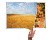 Book of seasons — Stock Photo