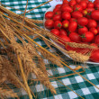 Wheat and tomatoes — Foto Stock