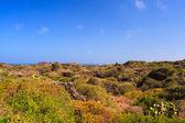 Pantelleria, Sicily — Stock Photo