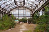 Abandoned industry — Stock Photo