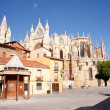 Cathedral of Leon — Stock Photo #7968796