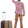 Back view of traveling man with suitcase pointing. Rear view peo — Stock Photo