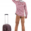 Back view of traveling man with suitcase pointing. Rear view peo — Stock Photo #27660771