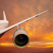Plane is flying at sunset — Stock Photo #28197201