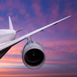 Plane is flying at sunset — Stock Photo #28197275