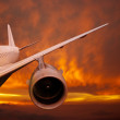 Plane is flying at sunset — Stock Photo #28257705